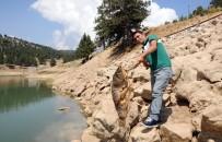 MERSIN - Esrarengiz balık ölümleri