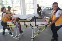 Karaman'da İneklerin Ezdiği Kadın Ağır Yaralandı