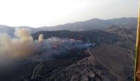 ORMAN İŞÇİSİ - Karşıyaka'da Orman Yangını
