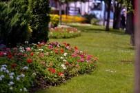 KORKULUK - Maltepe'yi Çiçeklerle Bezediler