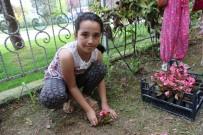 İLKÖĞRETİM OKULU - Minik Eller, Okul Ve Cami Bahçelerini Süsledi