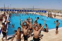 NİHAT ÇİFTÇİ - Şanlıurfa'da Bin 500 Genç Belediyenin Kurslarında Yüzme Öğrendi