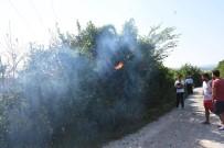 SÖNDÜRME TÜPÜ - Sinop'ta Yangın