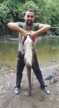 Dev Yayın Balığını Elleriyle Yakalandı
