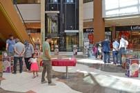 FOSİL - Fosillerin Gizemi Şanlıurfa Piazza'da Açığa Çıkıyor