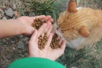 SOKAK HAYVANLARI - Gaziosmanpaşalı Çocuklar Sokak Hayvanları İçin Su Kabı Dağıttı