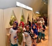 HAYVANAT BAHÇESİ - Hatıra Yaz Okulu Öğrencileri Tropikal Kelebek Bahçesi'ni Gezdi