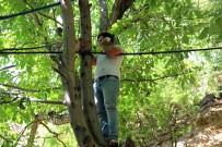Telefonla Konuşmak İçin Ağaçlara Çıkıyorlar