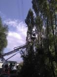 KAÇAK ELEKTRIK - Van'da Elektrik Kesintisinin Yaşanması