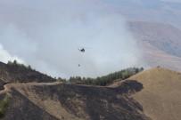 ORMAN MUHAFAZA MEMURU - Yangınlar Kontrol Altına Alındı
