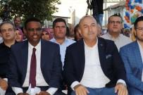 ULAŞTIRMA BAKANI - Bakan Çavuşoğlu Kofi Annan'la Görüştü