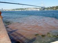 BEYLERBEYI - İstanbul Boğazı Kana Büründü