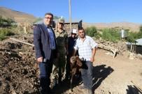 ŞEHİT ANNESİ - Kaymakam Çetin'den Şehit Ailelerine Kurbanlık Koyun Yardımı