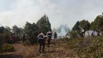 BALLıCA - Domaniç'teki Orman Yangınını Söndürme Çalışmaları Sürüyor