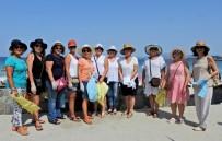 1 EYLÜL - Ilıca Plajı'nda Güvercin Uçurup, Temizlik Yaptılar