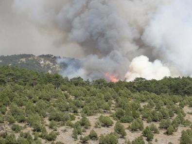 Kütahya'daki orman yangını Bilecik sınırına dayandı!