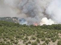 BALLıCA - Kütahya'daki orman yangını Bilecik sınırına dayandı!