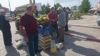 MEHMET ERASLAN - Bu Köyün Tamamı Kavun Yetiştiriyor