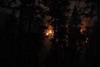BALLıCA - Domaniç'te Orman Yangını Söndürme Çalışmaları Gecenin Geç Saatlerine Kadar Devam Etti