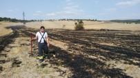 GÖKTEPE - Hisarcık'ta Anız Yangını