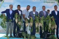 20 KASıM - Kayseri Şeker Çiftçisi, Randevulu Söküm Sayesinde 45 Milyon TL Kazanacak