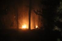 BALLıCA - Kütahya'daki Orman Yangını Kontrol Altına Alındı