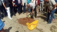 TARıM BAKANı - MHP'den Fındık Protestosu