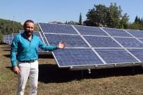 RÜZGAR ENERJİSİ - Bu park kendi elektriğini kendisi üretiyor