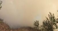 KAFKAS ÜNİVERSİTESİ - Sarıkamış'ta Orman Yangını Söndürüldü
