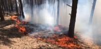 KAFKAS ÜNİVERSİTESİ - Yangın Yeniden Başladı