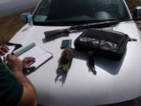 KıNALı - Aydın'da Kaçak Avcılara Ceza Kesildi