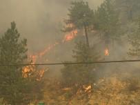 Emet'teki Orman Yangını Devam Ediyor