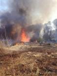 Malatya'da Orman Yangını Korkuttu