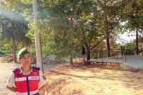 JANDARMA KARAKOLU - Manavgat'ta Tatil Yapan Rus Turist İntihar Etti