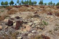 ASLANTEPE - Tarihi Gelibolu Yarımadası'na 15 Yeni Şehitlik