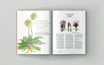 Z Dergisi Yayın Hayatına Başladı