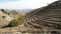 EROZYON - Çelikhan İlçesinde Toprak Fidanla Buluşacak
