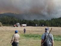 Emet'teki Orman Yangını Kontrol Altına Alınamıyor
