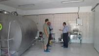 KOOPERATIF - Koyunköy Sütüne Sahip Çıktı