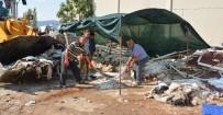 BÜYÜKBAŞ HAYVANLAR - Kurban Derileri Yola Çıkıyor