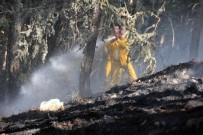 KıZıLAY - Kütahya'daki Orman Yangınlarında Söndürme Ve Soğutma Çalışmaları Sürüyor