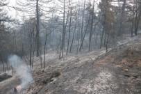 YANGIN HELİKOPTERİ - Orman Yangınında 25 Hektar Alan Kül Oldu