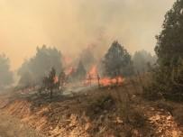 SAMANLıK - Dursunbey'de Yaklaşık 100 Hektar Alan Yangında Zarar Gördü