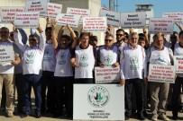 KANDIRA CEZAEVİ - STK'lar FETÖ Davasına Dikkat Çekmek İçin Eylem Yaptı
