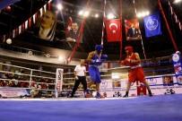 BOKS - Uluslararası Ahmet Cömert Boks Turnuvası Başladı