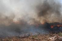 GÜBRE - Aydın'da Çöplük Yangınları Korkutmaya Başladı