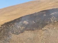 ORMAN YANGıNLARı - Çıldır'da Mera Yangını