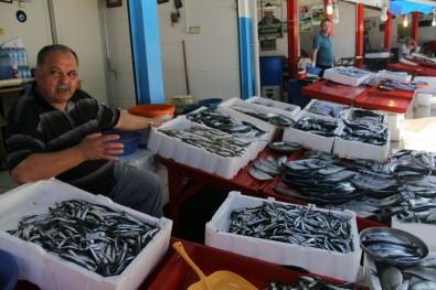 Giresun'da yerli hamsi çıktı; Fiyatı ise 15 TL