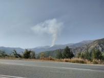 ZIGANA - Gümüşhane'de Orman Yangını