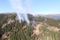 AHMET YıLMAZ - Gümüşhane'deki Orman Yangını